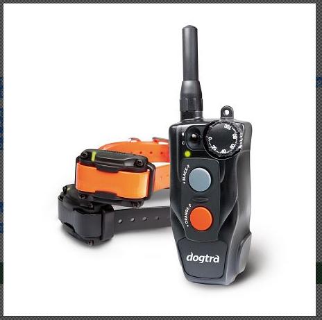 Dogtra 642C Ferntrainer für 2 Hunde