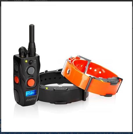 Dogtra ARC 802 Ferntrainer für 2 Hunde