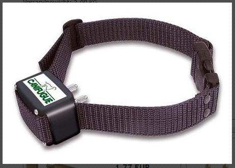 Canifugue Zusatzhalsband