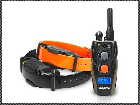Dogtra ARC 1202S Ferntrainer für 2 Hunde