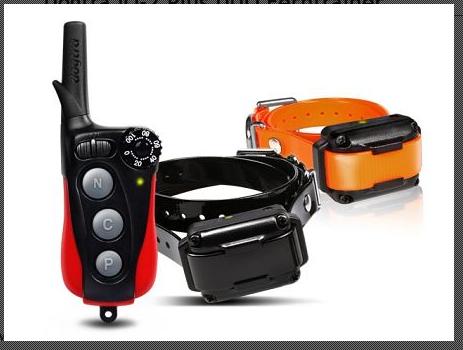 Dogtra iQ-2 Plus DUO Ferntrainer Ferntrainer für 2 Hunde